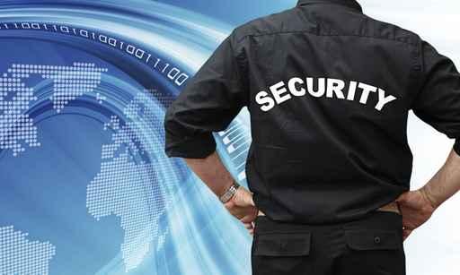 lavoro sicurezza guardia giurata