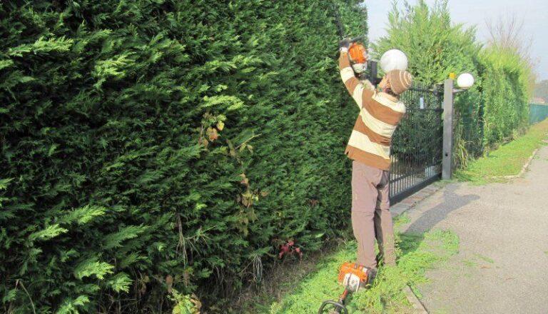 Posto Fisso: si assumono Giardinieri a tempo INDETERMINATO.
