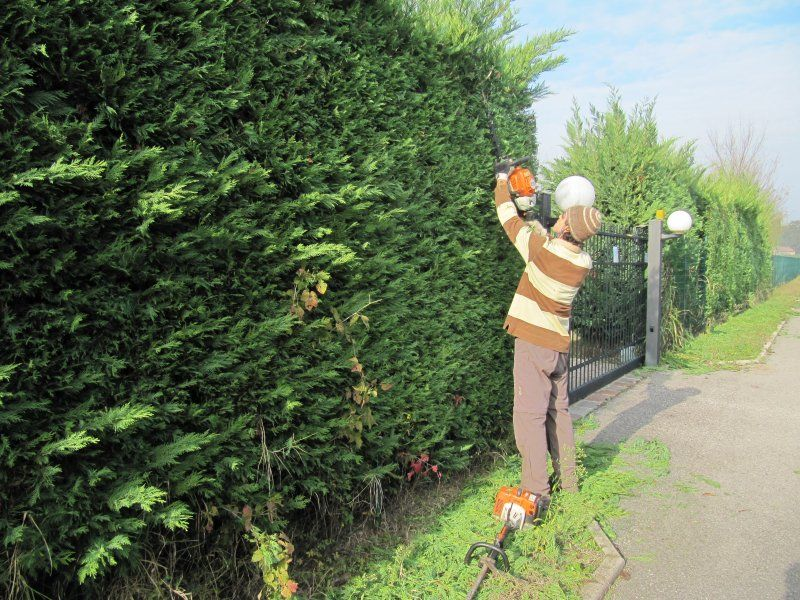 lavoro giardiniere