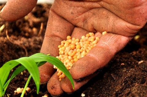 lavoro settore agricolo