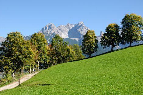 lavoro eremita alpi austria