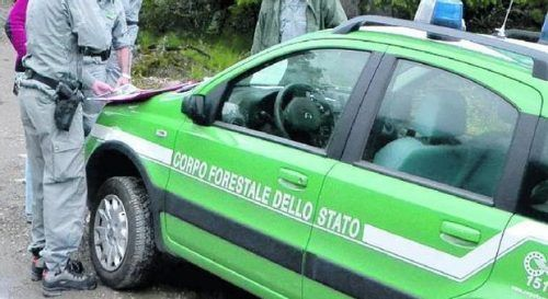 concorso pubblico carabinieri forestale