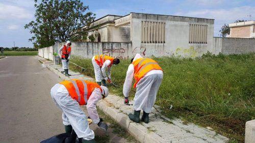 lavoro cura del verde cittadino