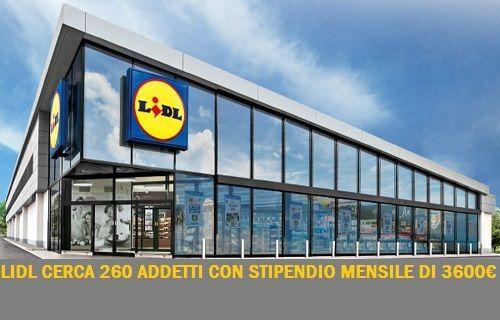 lidl lavoro supermercato italia