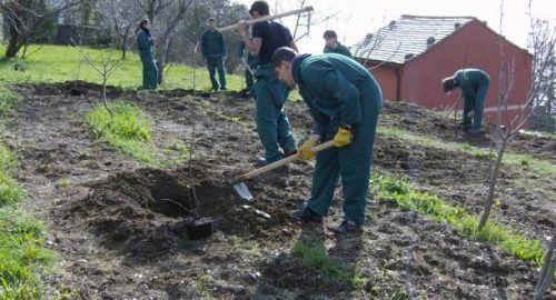 studenti a zappare la terra