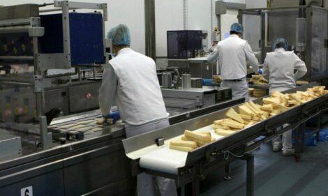 addetti confezionamento formaggio