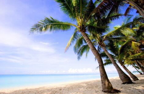 paradise-on-a-beach-1360144-638x416